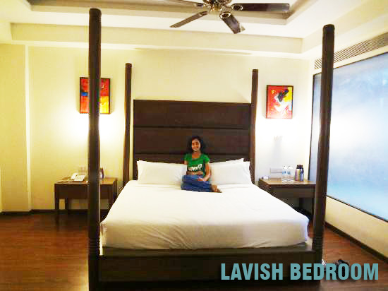 What to Expect from a Lavish Hotel/Report in Udaipur?